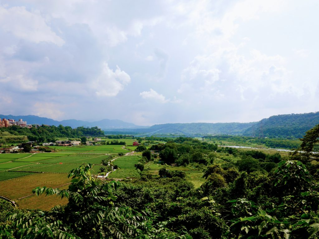 大渓の自然