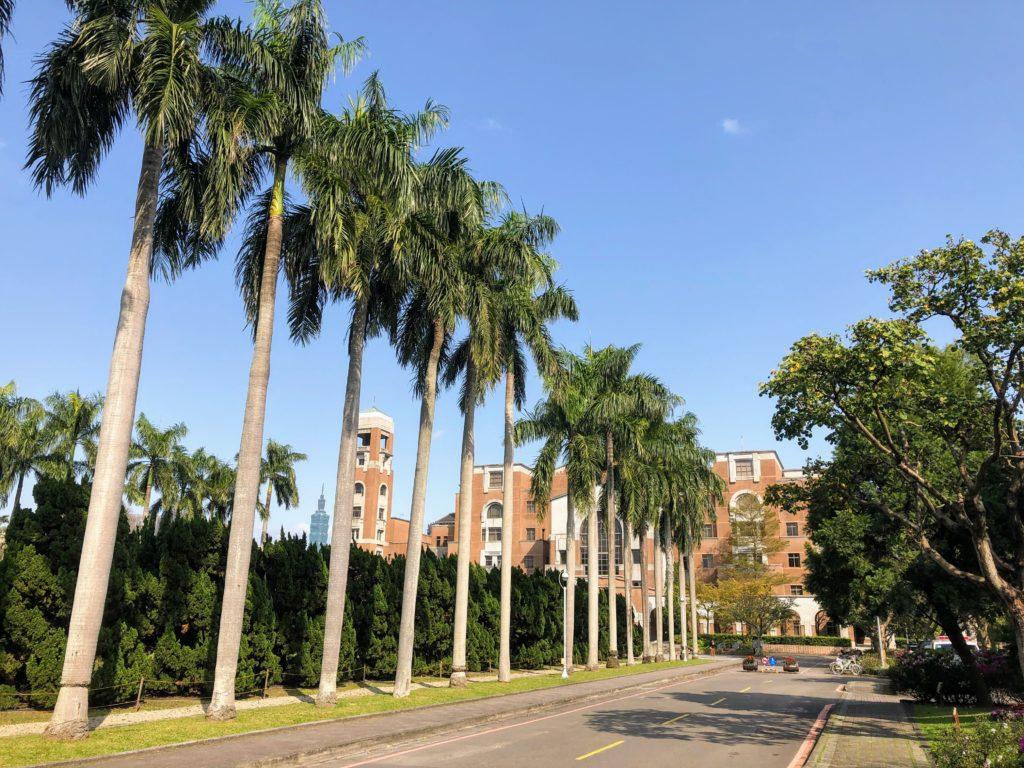 台湾大学総合図書館と台北101