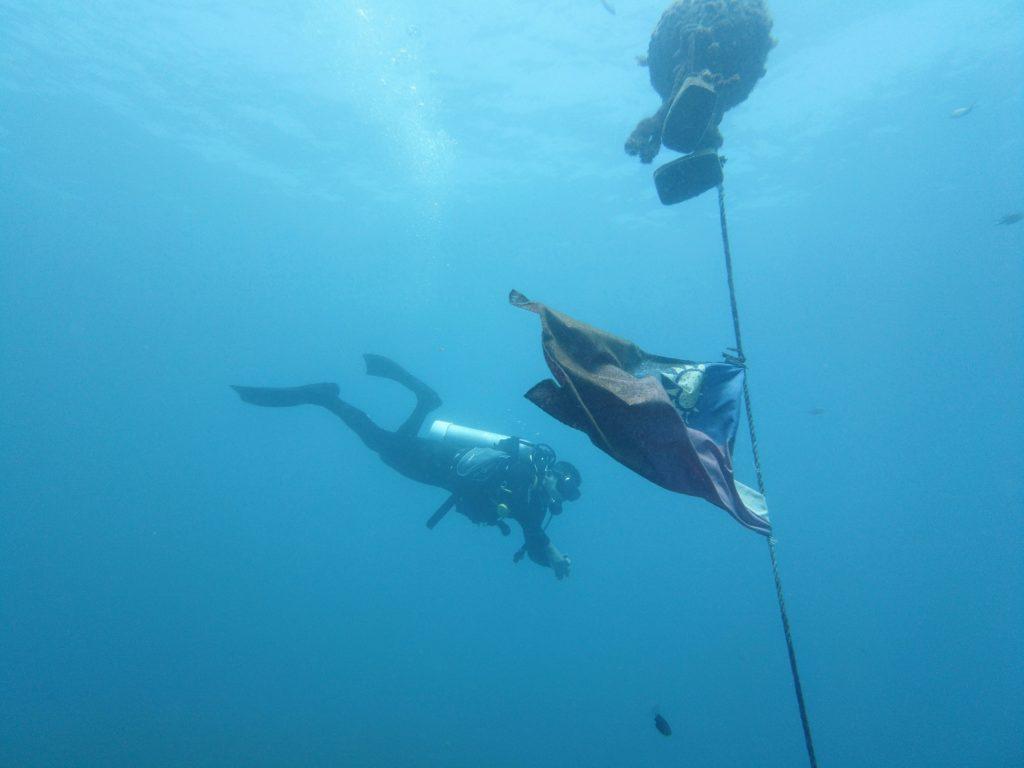 海中の中華民国国旗